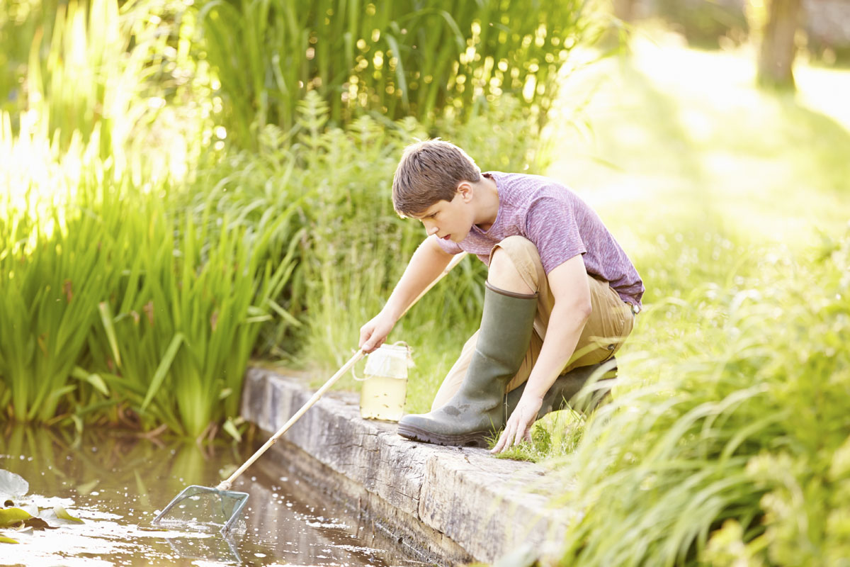 How To Keep Pond Water Clear Without A Filter